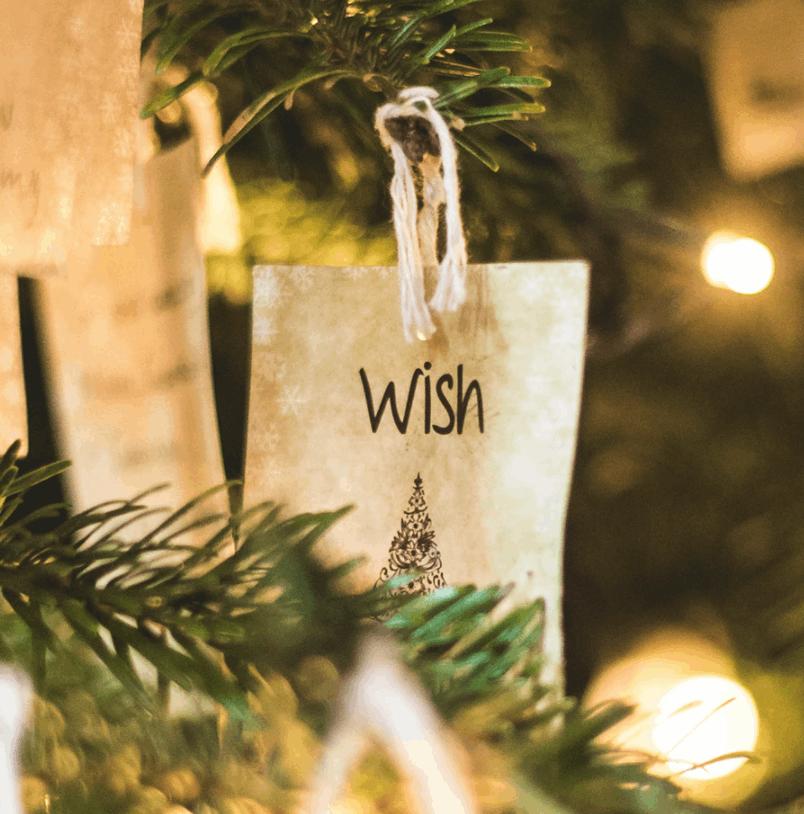 Christmas wish list dad