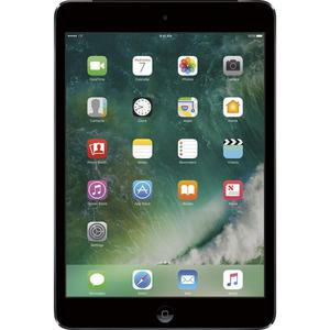 Apple iPad mini 2 16 GB